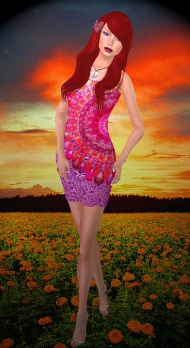 Beautiful Marja Field of Slowers Sunset